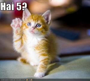 funny-pictures-kitten-asks-for-a-high-five
